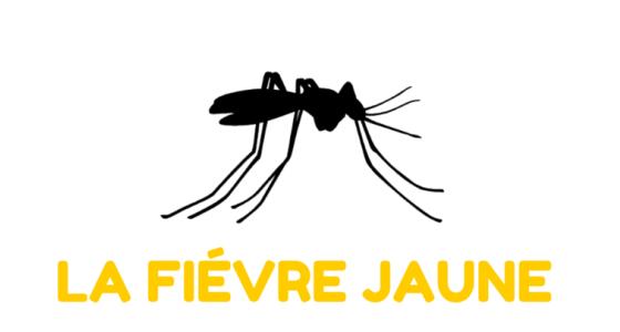 Encouragement du Doyen pour la vaccination contre la fièvre jaune