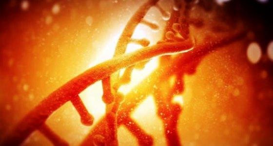 Biochmie générale, Cours et exercices corrigés